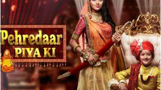 Industry REACTS to the Pehredaar Piya Ki Controversy!