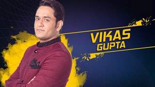 #BB11: And Vikas Gupta continues to get SUPPORT from the telly world in a series of tweets