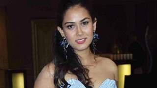Mira Rajput Kapoor criticizes e-commerce website; slams them for overusing plastic bags!