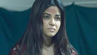 Meera Chopra receives backlash for her character in Section 375!