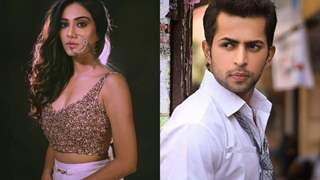 Charu Mehra & Alok Narula To Play Robbers In Their Next