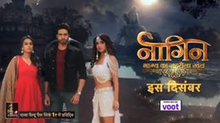 The Full Promo of 'Naagin 4' Is Out - Meet The Leads