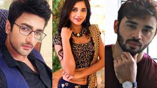 Guddan Tumse Na Ho Payega: Love Triangle To be Shown Post Leap; Samridh Bawa To Roped In