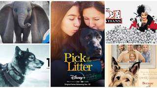 5 Movies To Watch on Disney+ Hotstar Premium, If You're Somebody Who Loves Animals!