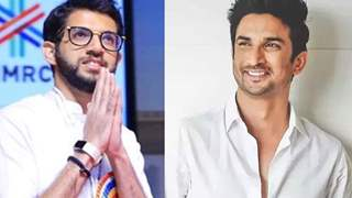 Adtiya Thackeray Denies Any Connection With Sushant Singh Rajput's Death Case
