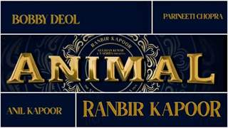 Ranbir Kapoor's 'Animal' directed by Sandeep Vanga finalises a release date