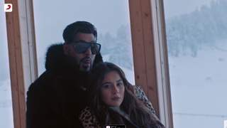 Shehnaaz Gill and Badshah's music video 'Fly' gets a thumbs up from fans