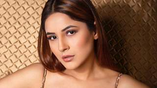 Shehnaaz Gill feels people spreading negativity only works positively for her