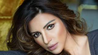 Haven't had plastic surgery, it's all cosmetic procedures - Shama Sikander