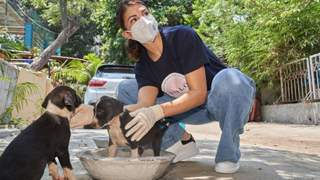 Jacqueline Fernandez visits and helps stray animals through her YOLO Foundation