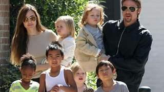 Brad Pitt wins custody battle against Angelina Jolie