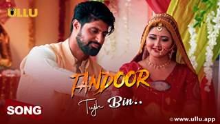 Tandoor: Ahead of Rashami Desai and Tanuj Virwani starrer, makers unveil the love ballad 'Tujh Bin'