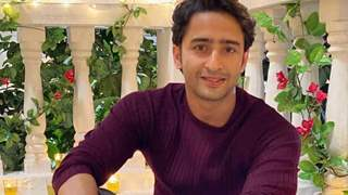 Pavitra Rishta 2.0: Shaheer Sheikh says 'When I was first approached for PR2, I was taken aback'