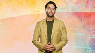Shaheer Sheikh: Dev is complicated and it helped me understand different perspectives, I like things simple
