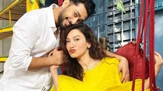 First Look of Gauahar Khan, Zaid Darbar's music video Wapis out now