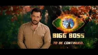'Bigg Boss 15' gets a premiere date