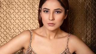 Shehnaaz Gill to resume shoot for her film Honsla Rakh?