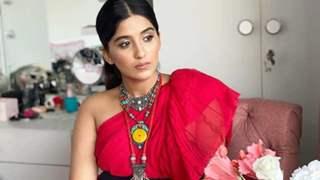 Nimrit Ahluwalia on why she couldn't be a part of Shehnaaz Gill and Diljit Dosanjh's Honsla Rakh