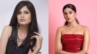 New face of 'Choti Sardarni' - Puja Sharma opens up on making her TV debut