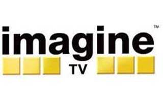 Actors shocked at Imagine TV shutting down