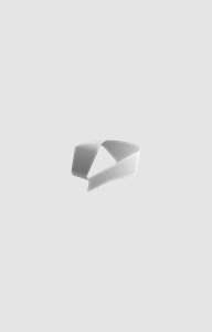 Murder At Sharma Mansion