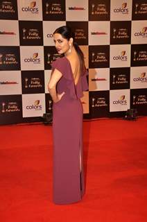 Celina Jaitly shows off at the Indian Telly Awards