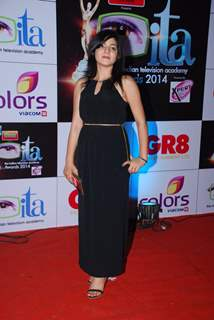 Neha Bagga was seen at the ITA Awards 2014