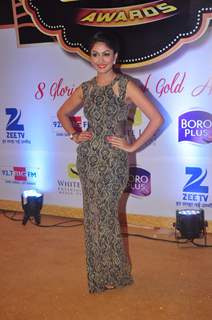 Mrunal Thakur at Gold Awards