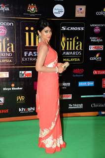 Shreya Saran poses for the media at IIFA 2015 Day 2