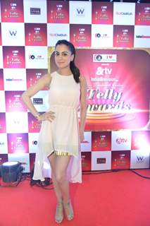 Shraddha Arya at 14th Indian Telly Awards Nomination Ceremony