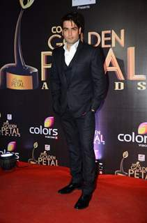 Vivian  Dsena at Golden Petal Awards 2016