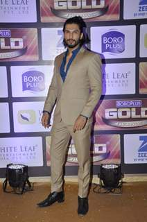 Manish Raisinghan at Zee Gold Awards 2016