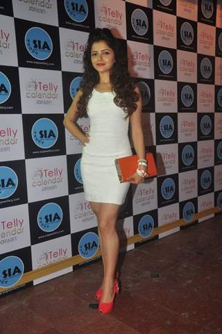 Rubina Dilaik was at the Launch of Telly Calendar