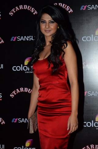 Jennifer Singh Grover poses for the media at Sansui Stardust Awards Red Carpet