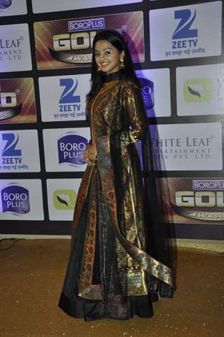 Helly Shah at Zee Gold Awards 2016