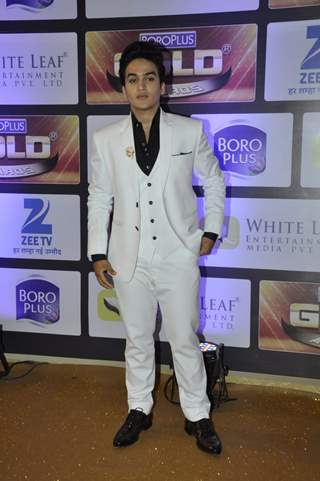 Faisal Khan at Zee Gold Awards 2016