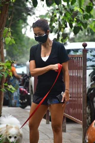 Malaika Arora steps out for a walk with her dogs!