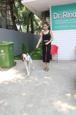 Fatima Sana Shaikh snapped at a pet clinic