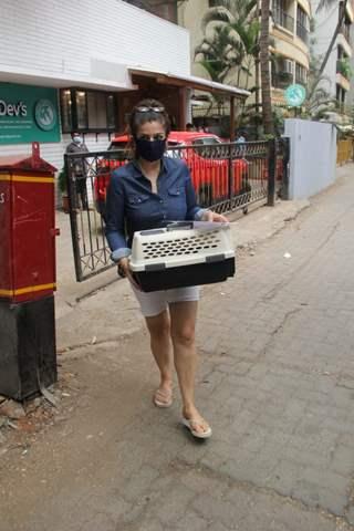 Raveena Tandon snapped at a pet clinic in Khar!