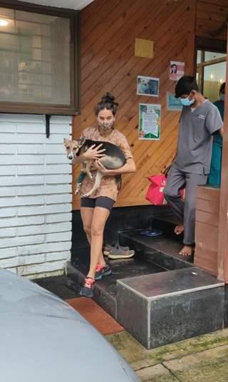 Shibani Dandekar snapped at a pet store