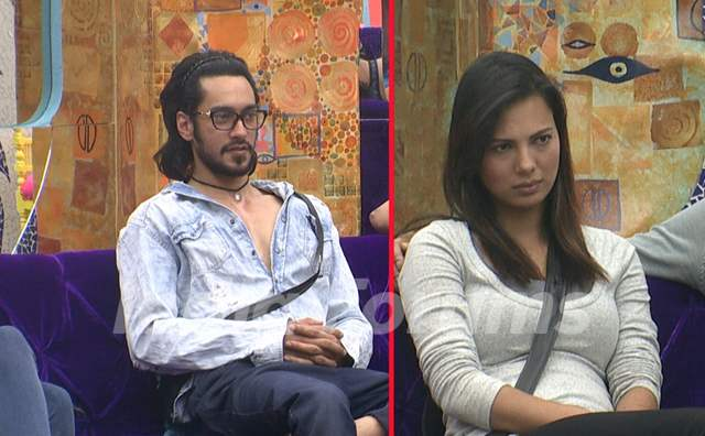 Bigg Boss 9 Nau: Day 73- Rishab Sinha and Rochelle Rao