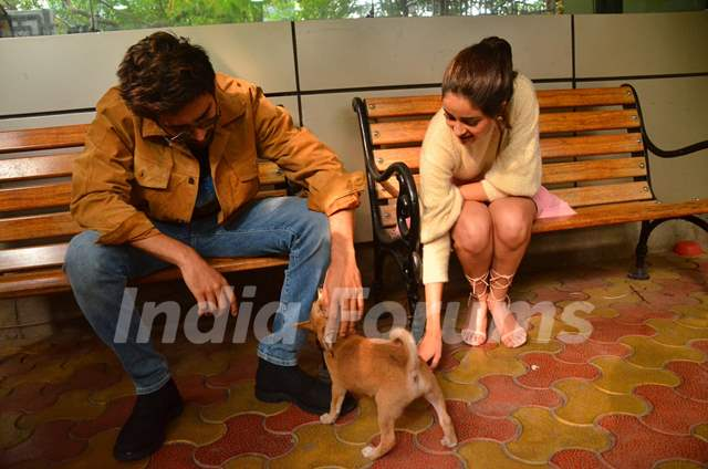 Kartik Aaryan and Ananya Panday snapped playing with a puppy during the promotions of Pati Patni Aur Woh