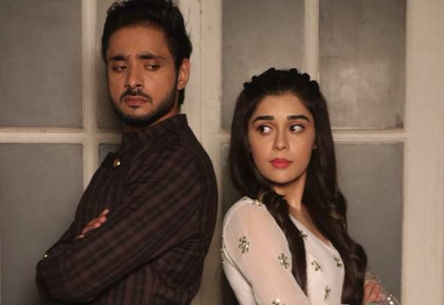 Eisha Singh and Adnan Khan
