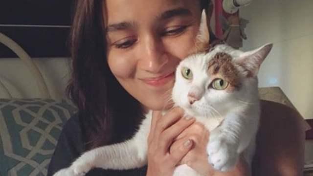 Alia Bhatt's cat Sheeba no more