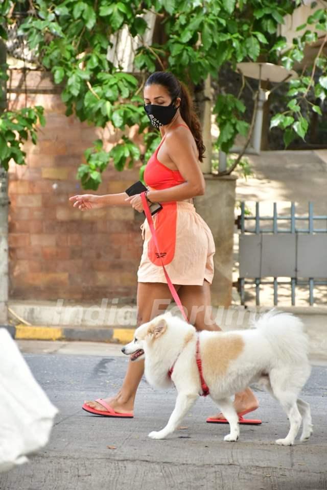 Malaika Arora snapped at Bandra