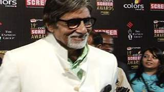 Bollywood Celebs at Color Screen Awards 2013