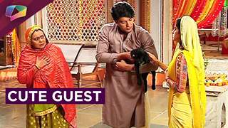 New guest in Sooraj and Sandhya's life