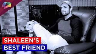 Shaleen Malhotras unconditional love for his dog