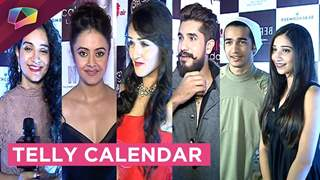 Launch of Telly Calendar 2017